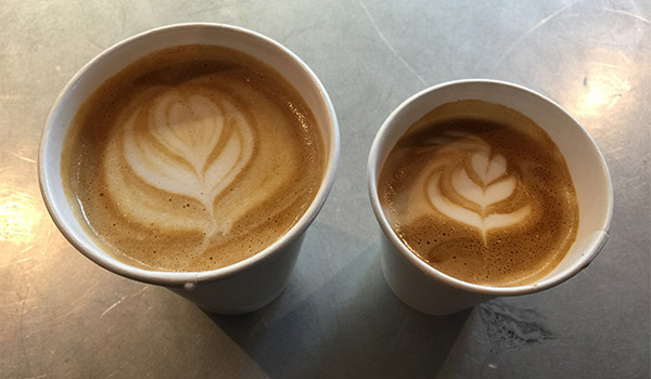 Flat White vs Latte at Common Grind