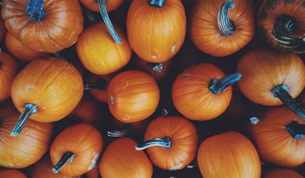 Halloween is the time for Pumpkin Pie